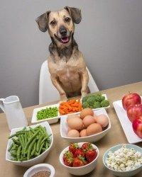 Las dietas naturales están